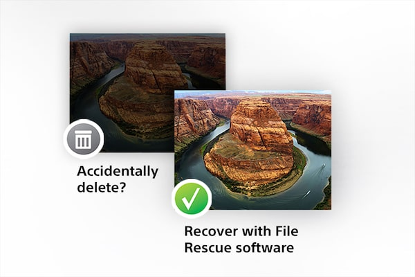 Software descărcabil File Rescue