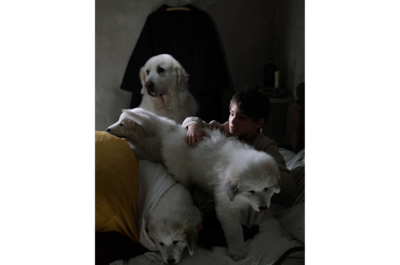 christophe-brachet-sony-alpha-7RII-young-boy-in-bed-with-3-large-dogs-lying-on-him